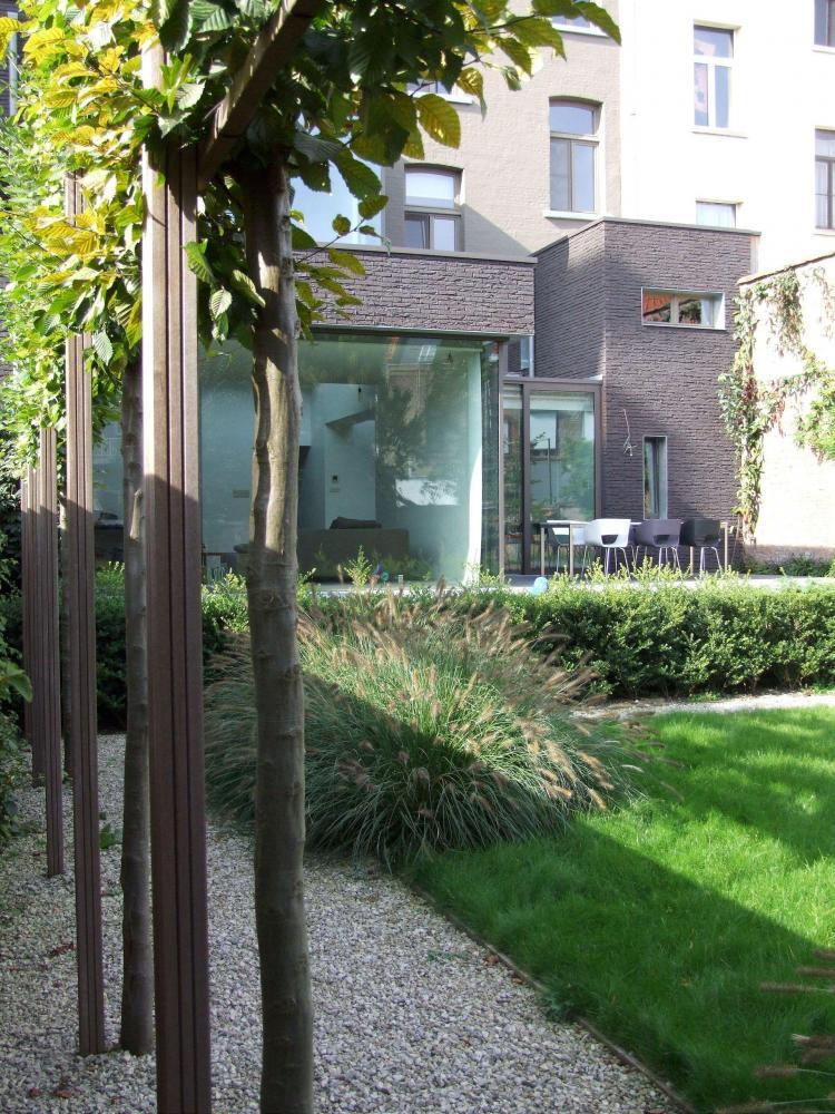 restauratie_herenwoning_mechelen_stadstuin_leibomen_beukopstam